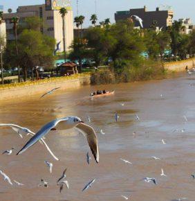 بالصور.. أجواء خيالية رائعة تعيشها الآن مدينة الاهواز
