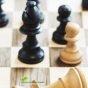 لاعب الخوزستاني يتصدر قائمة اللاعبين  في ألعاب الشطرنج الدولية