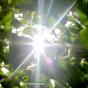 الارصاد تتوقع ارتفاع درجات الحرارة الى ٤٩ والشارع يلوح على ٥٥