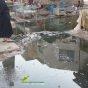 انحدار مياه المجاري يؤدي إلى عودة الأمراض المعوية للرفيع